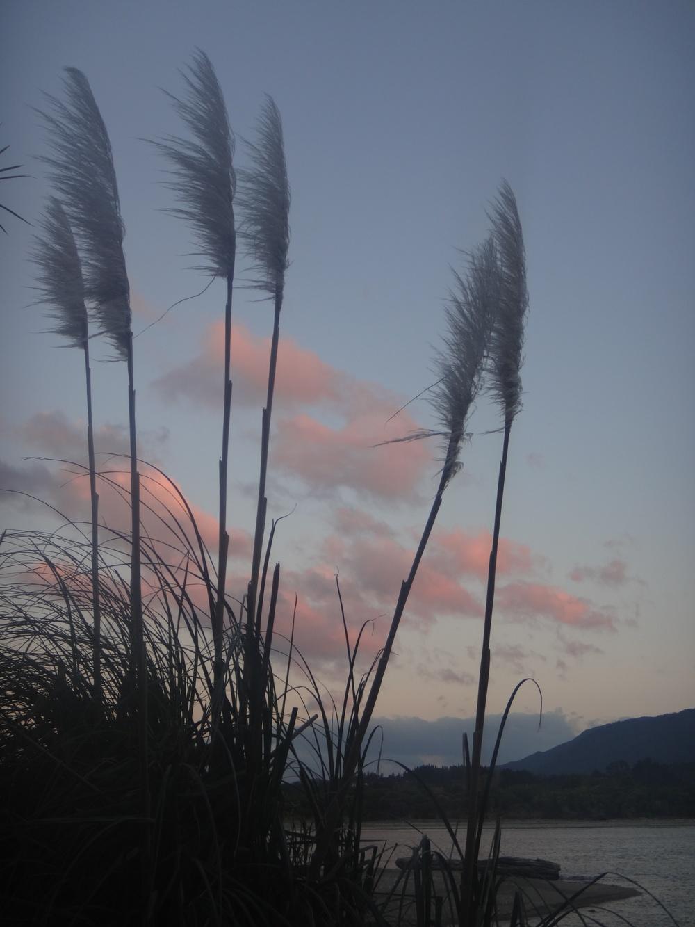 Early evening Milnthorpe Estuary.
