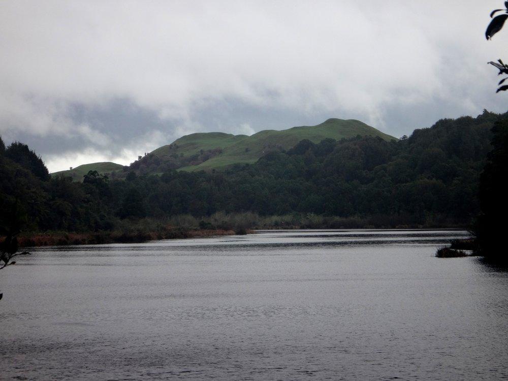 Lake Rotokare.