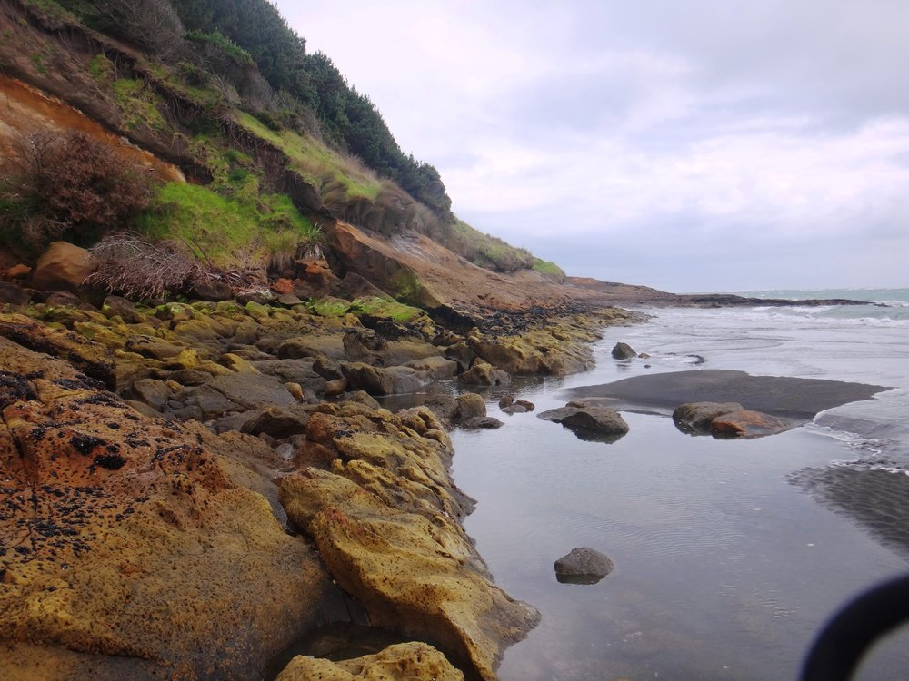 Aotea Harbour Cliffs.