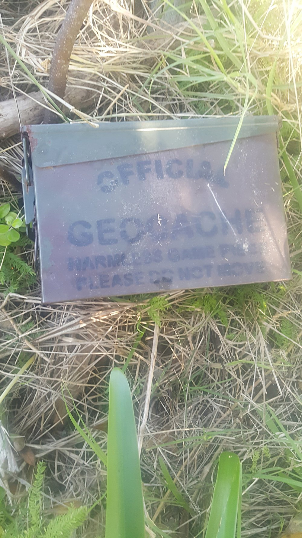 GeoCache located.