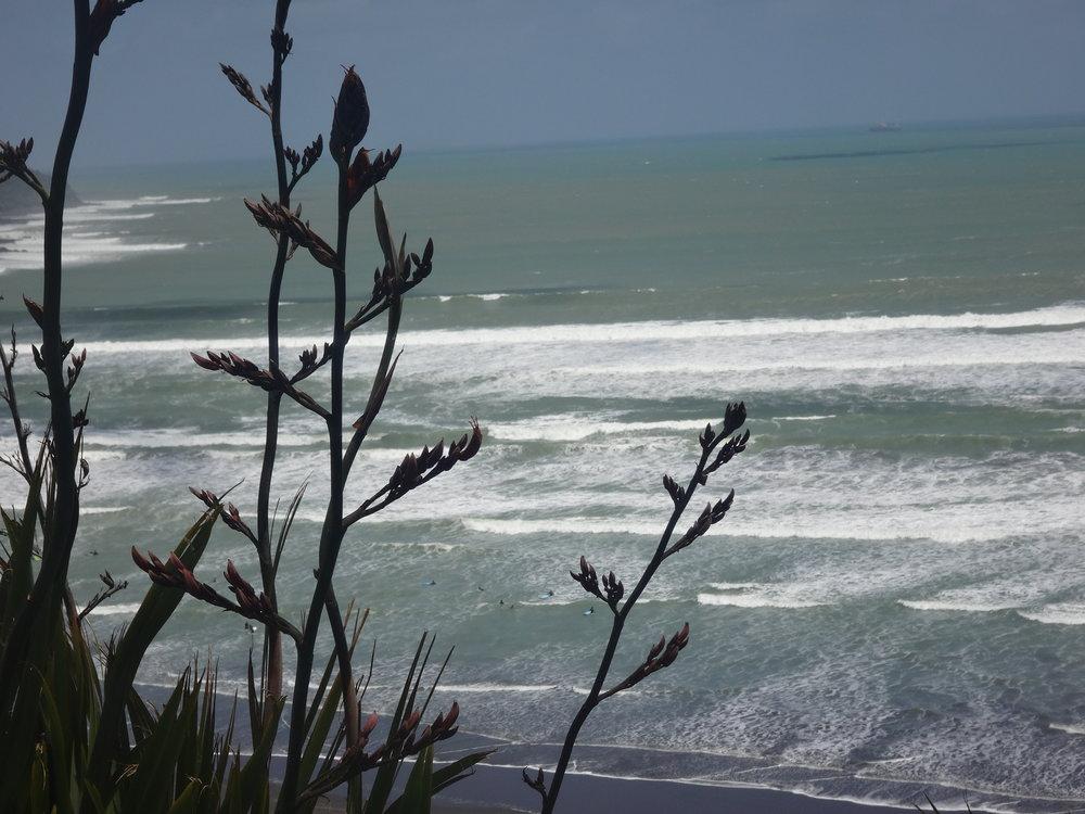 The Raglan Ocean.