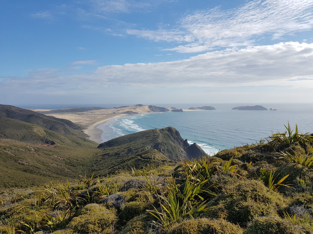 View towards Cape Maria van Diemen.