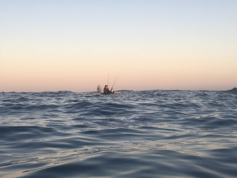 Fishing in the evening swell.