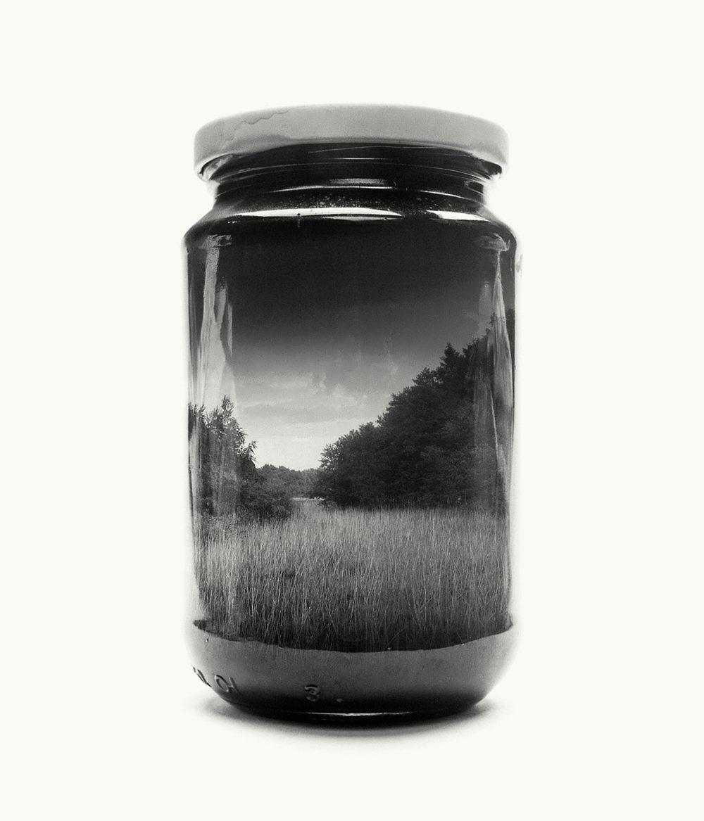 jarred-reed.jpg