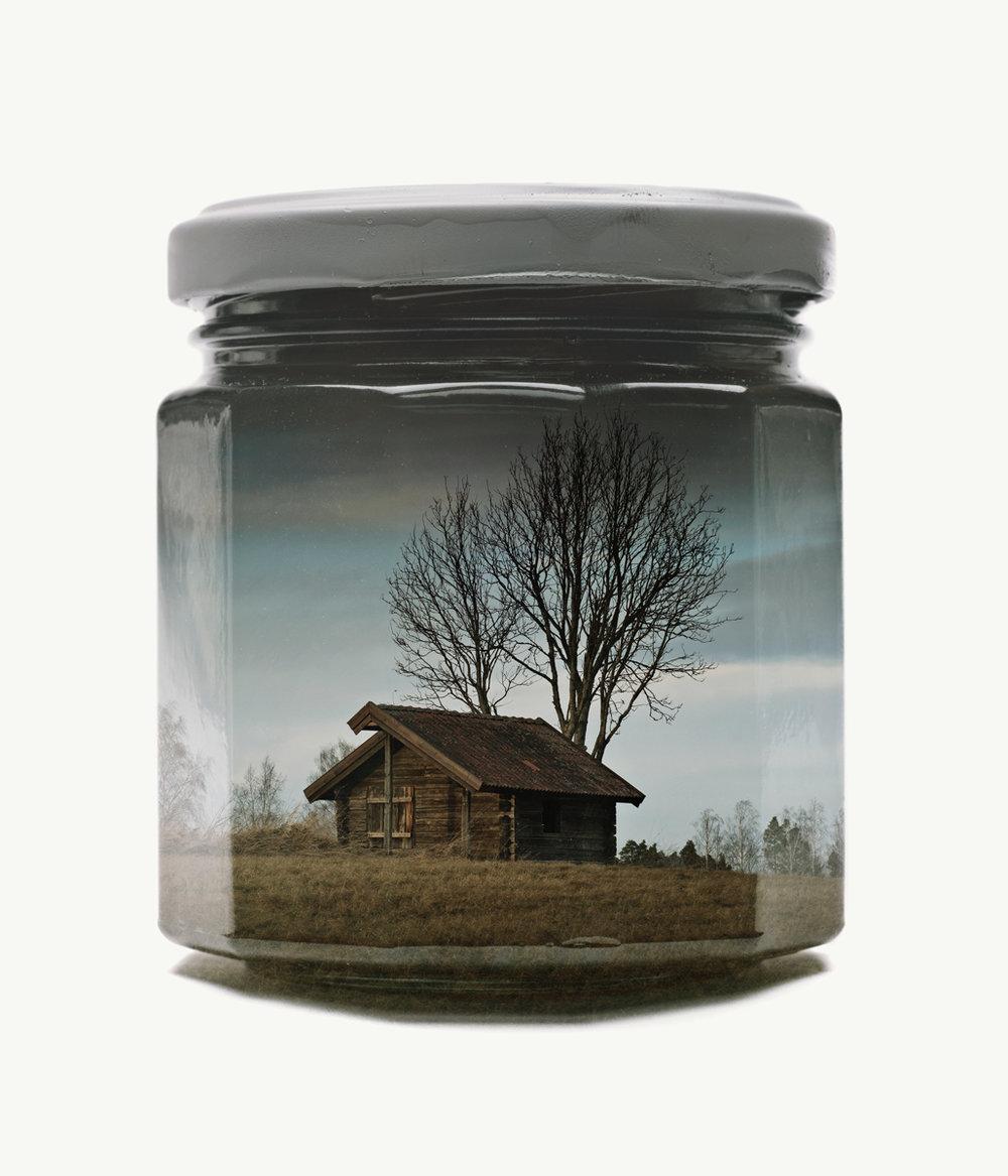 Lone House, 2017