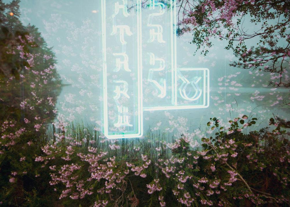 Neonscape-8.jpg