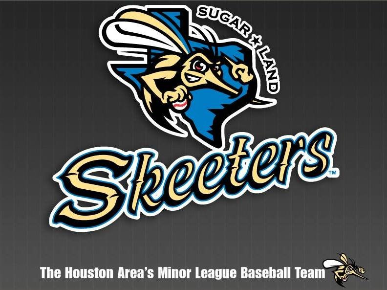 sugar-land-skeeters-website-intro