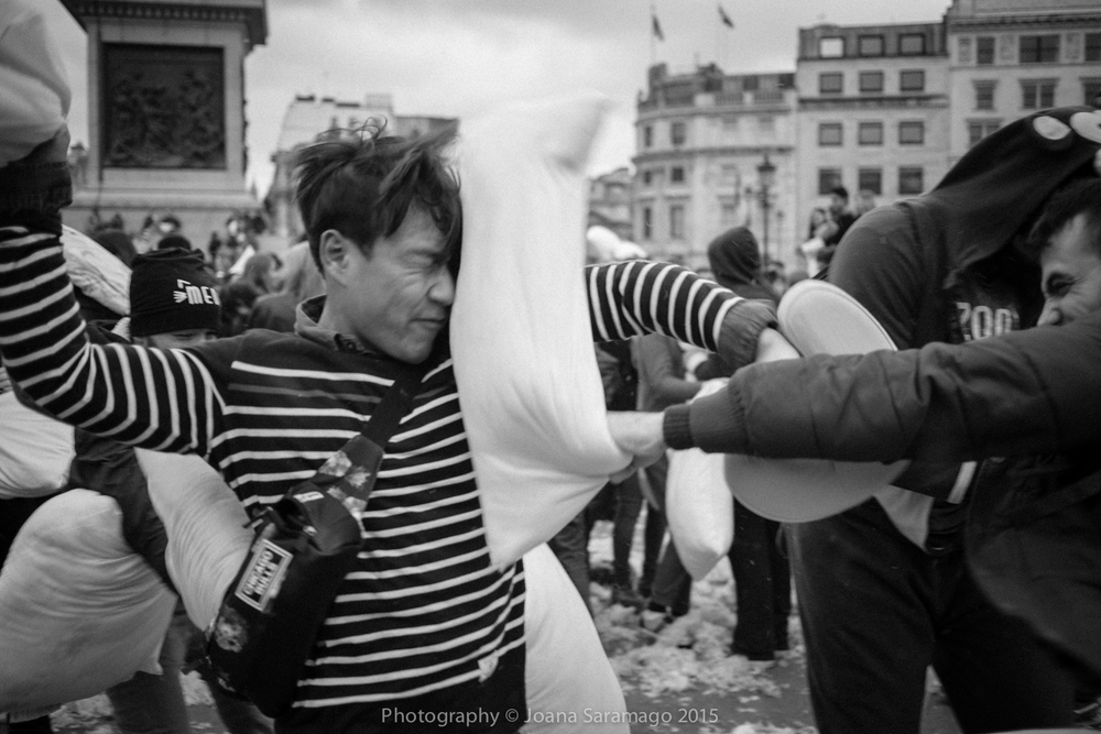 PillowFight2015_JSRlo-4.jpg