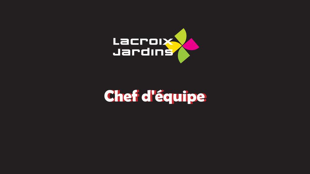 Recrutement-Web-Chef-Equipe.jpg
