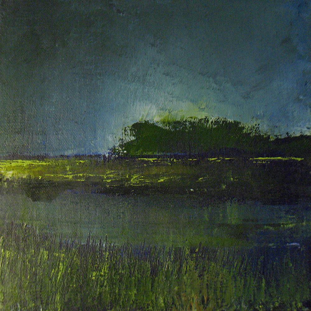 Marsh Nocturne 2