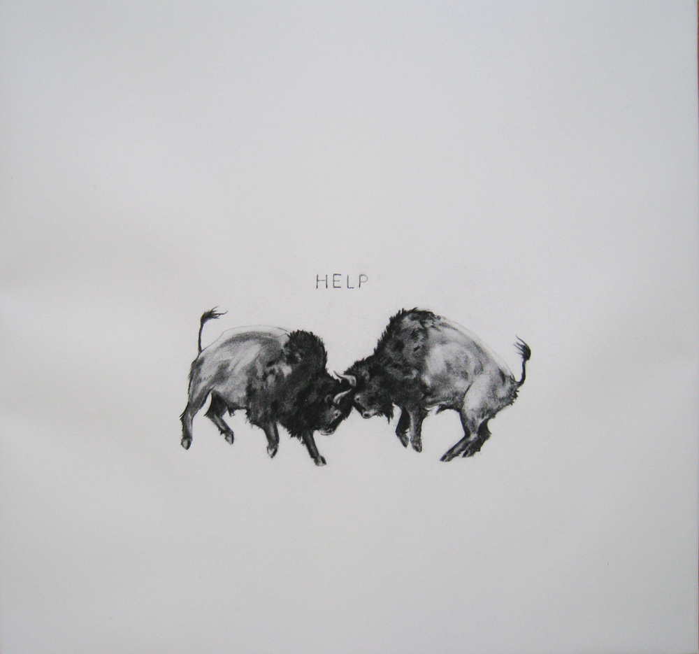 "Jennifer Murray, ""Conflict (Bison)"" (2014)"