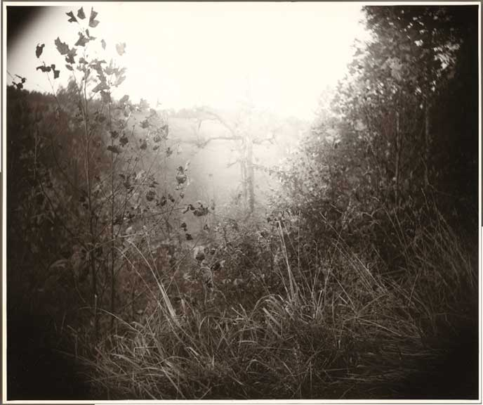 "Sally Mann, ""Untitled"" (c. 1995), Digital C-print, Edition of 100, 24"" x 20"""