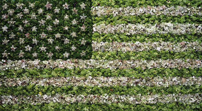 "Vik Muniz, ""American Flag"" (2009), Digital C-print, Edition of 100, 20"" x 24"""