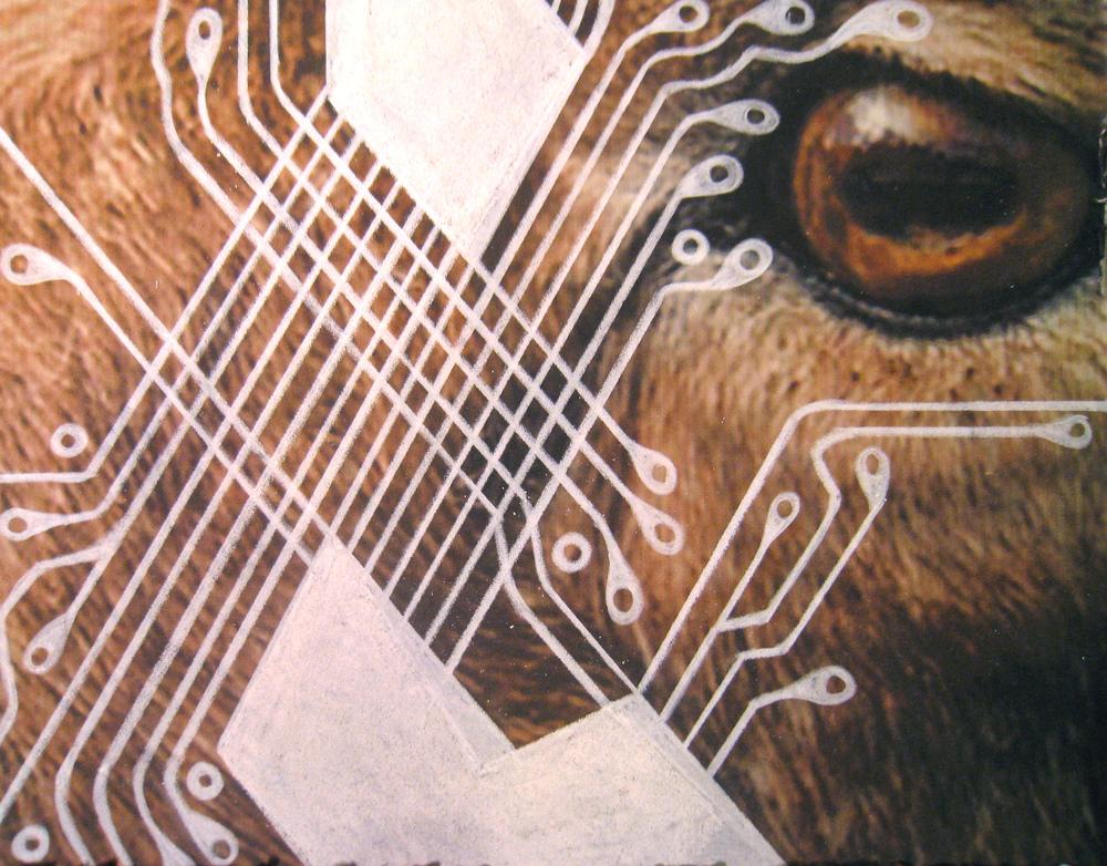 "Jennifer Murray, ""Fracture 3 (Bighorn)"" (2014), drawing on inkjet print, 8"" x 10"" $850 USD"