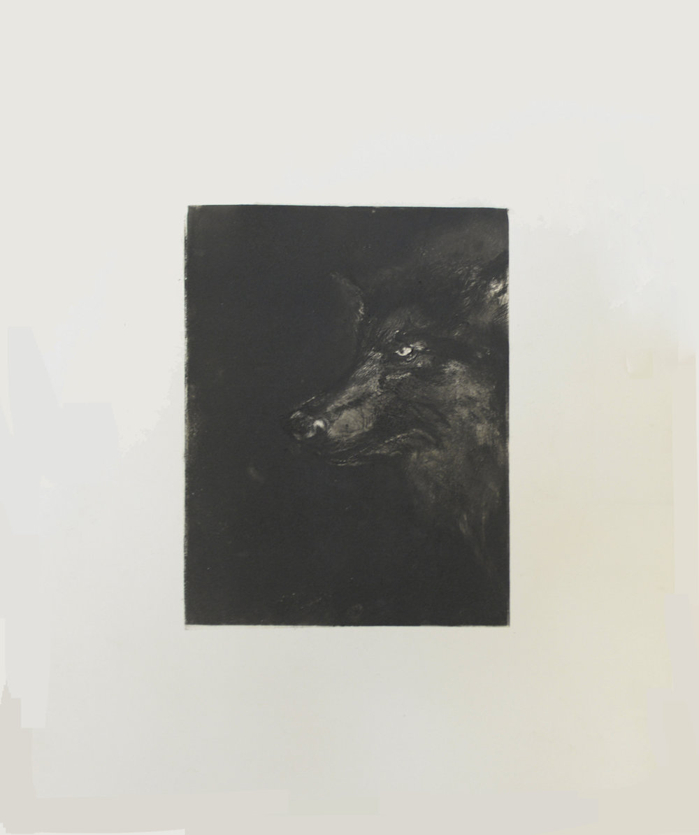 Murray_Wolf Print Black.jpg