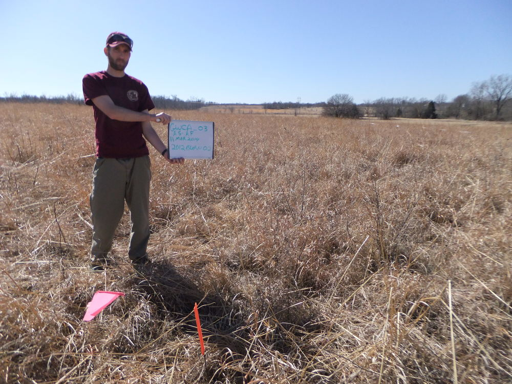 Pre-burn monitoring in 2014 shows the success of previous treatments with reduced sumac stems. Intern David Londe holds the indicator sign for photopoint monitoring.