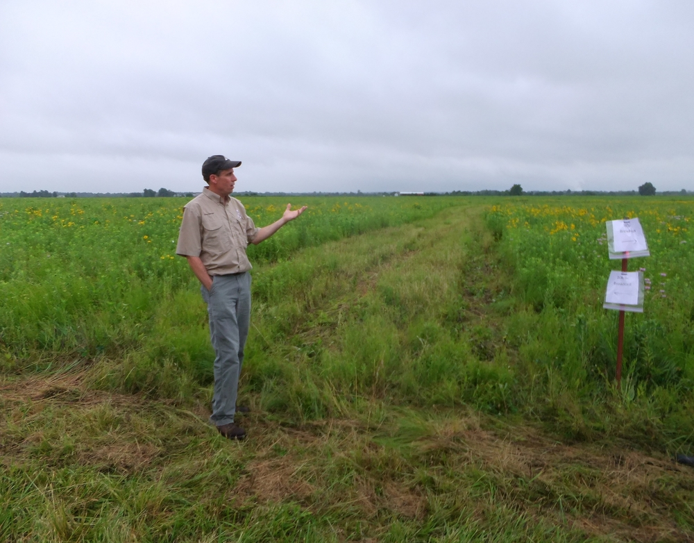 David Darrow, MDC manager, explains a prairie reconstruction study on one of his areas.