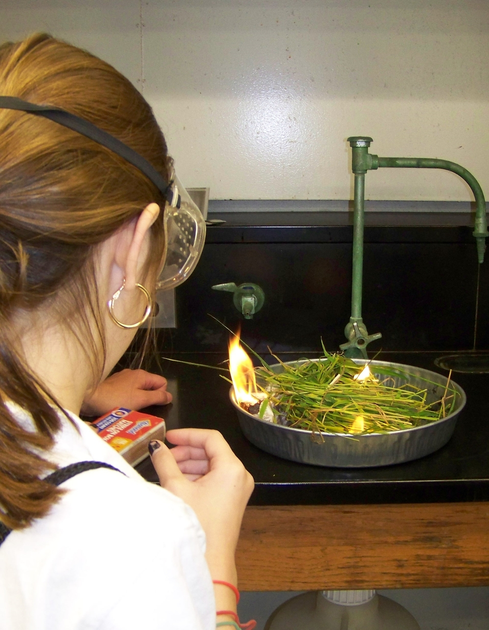 Student observes green fuel burning in a lab experiment.