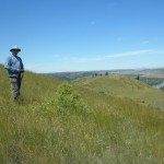Dr. Fuhlendorf stands in a 2 year old burn patch at the Charles M Russel National Wildlife. Photo by D. Elmore.