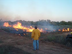 Staff observing a prescribed fire at the Matador Wildlife Management area near Childress, TX.