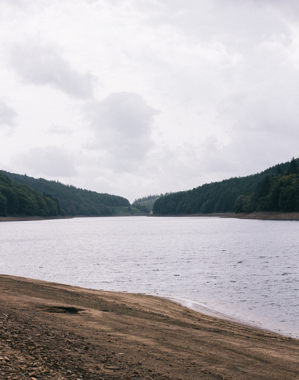 From-Roses---Ladybower-3.png