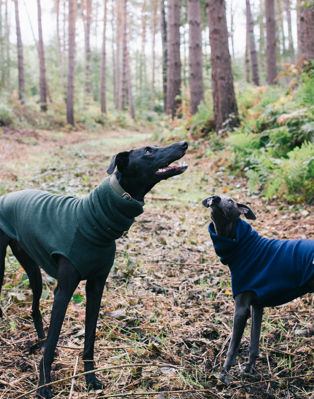 Redhound For Dogs Fleece