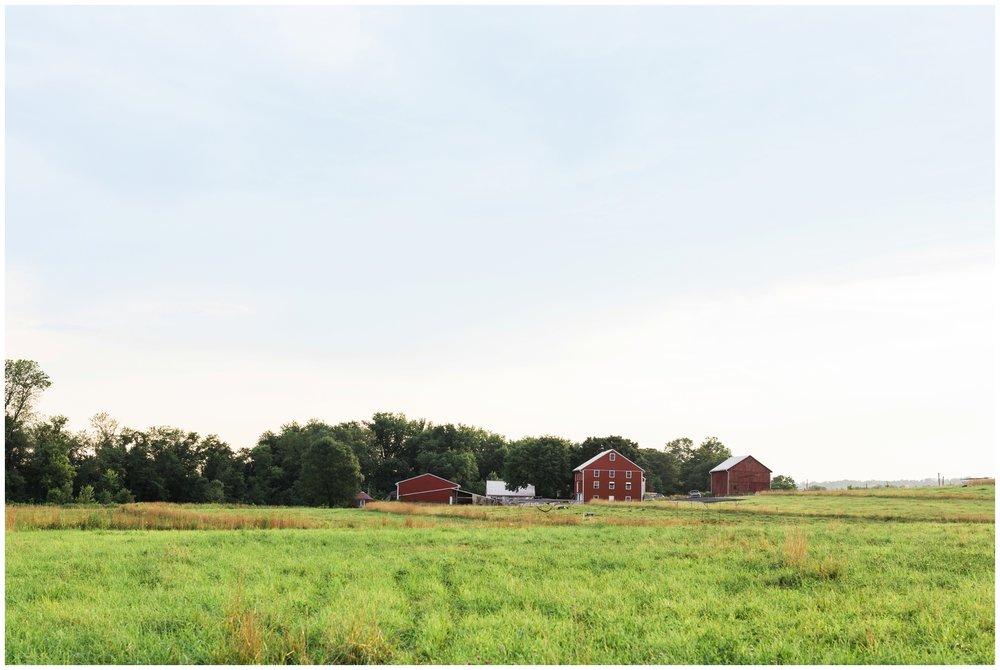 rising-locust-farm-lancaster-pa-local-organic-CSA_0026.jpg