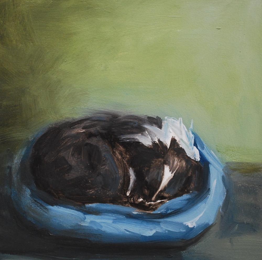 Sleeping Sades.JPG