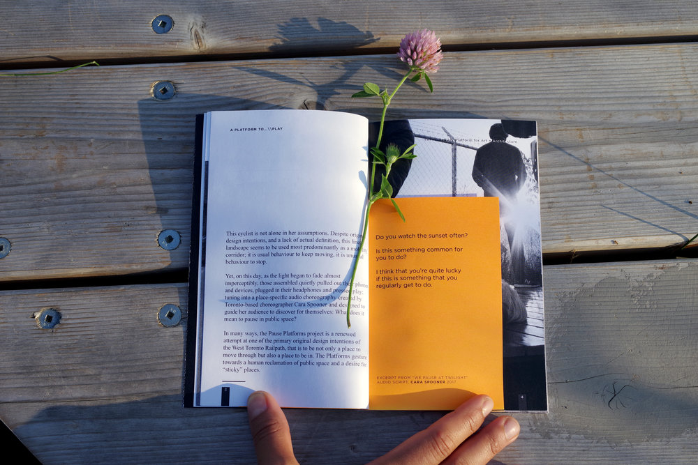 DeRAIL 2017 Book July 2 2018_Martin Reis 20072.JPG