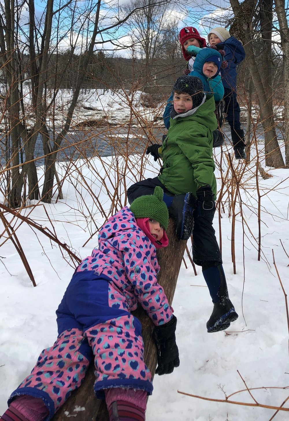 - Students look for sign of beaver activity down near the river. The students found this fallen tree which was an invitation to climb!