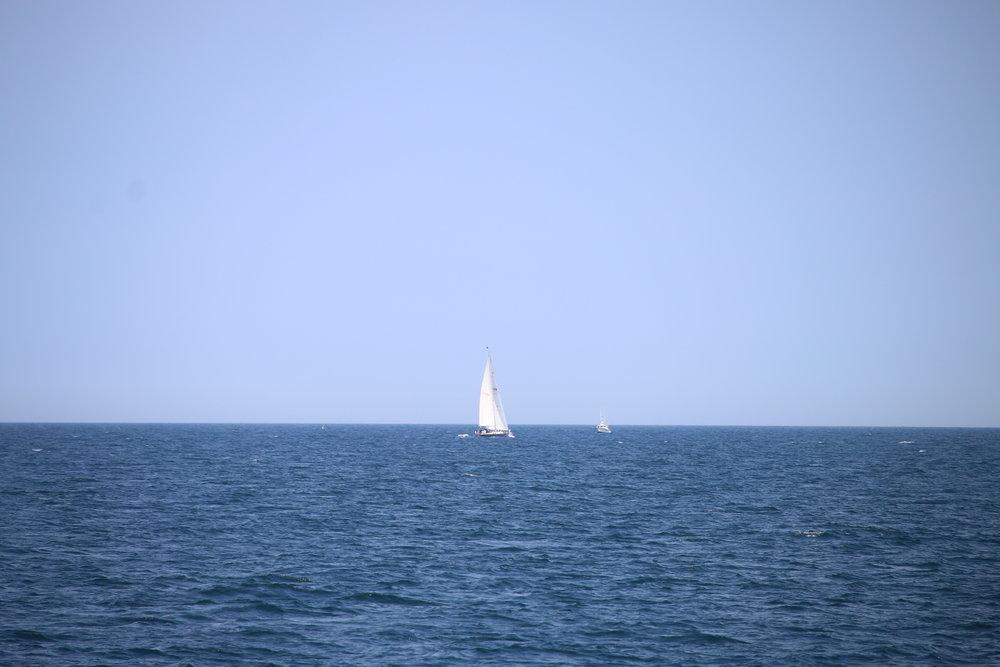 sailboat leaving cape cod gina baran