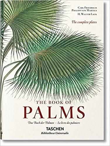 palms books gina baran interiors amazon