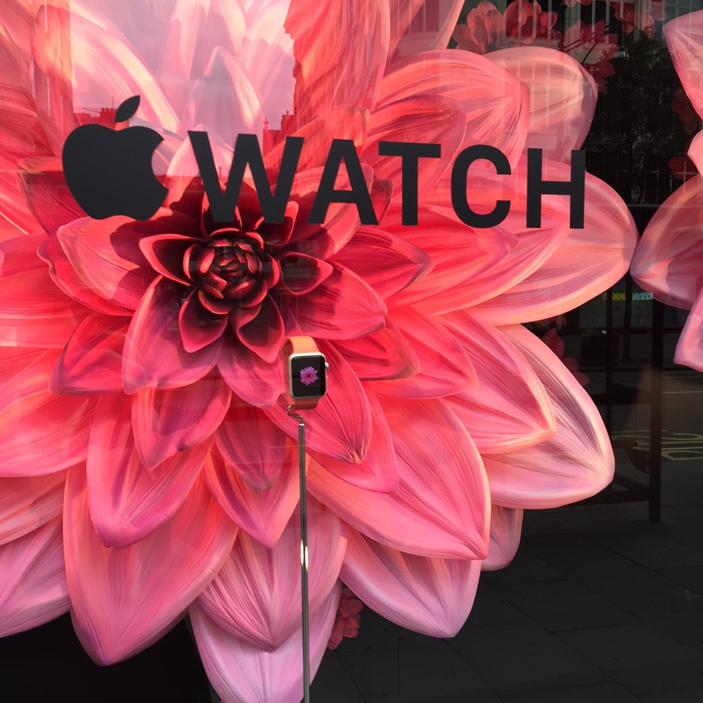 I love how the flower on the watch screensaver is replicated in giant form behind it.
