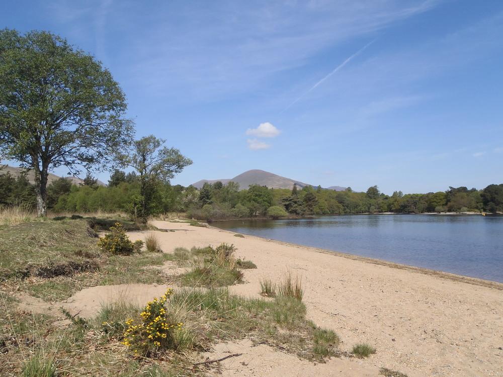 view-of-loch-lomond-from-inchmoan-island