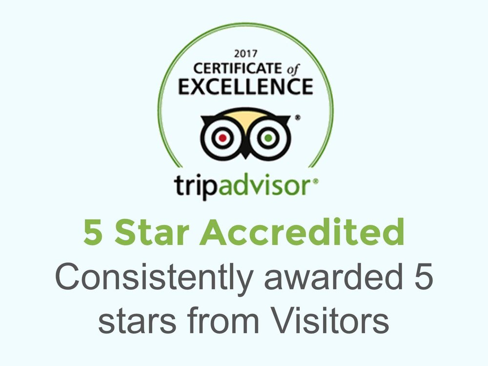 certificate of excellence from tripadvidor for our tours.jpg