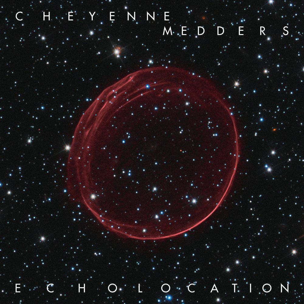 echolocation-cover (1).jpg