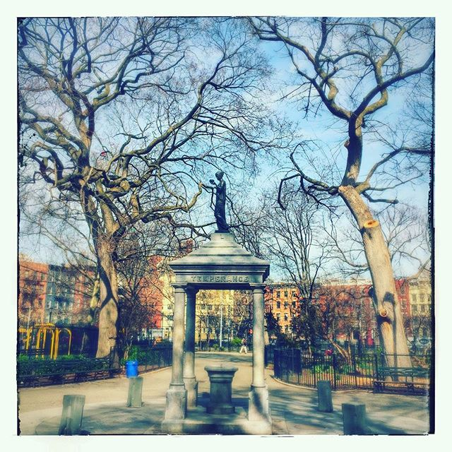 Thompkins Square Park #park #sculpture #eastvillage #winter #trees #nyc #archilovers #natureshots #naturevalley #naturehub #naturealma #natureshooters #archidaily #nycprime_ladies #nycprimeladies