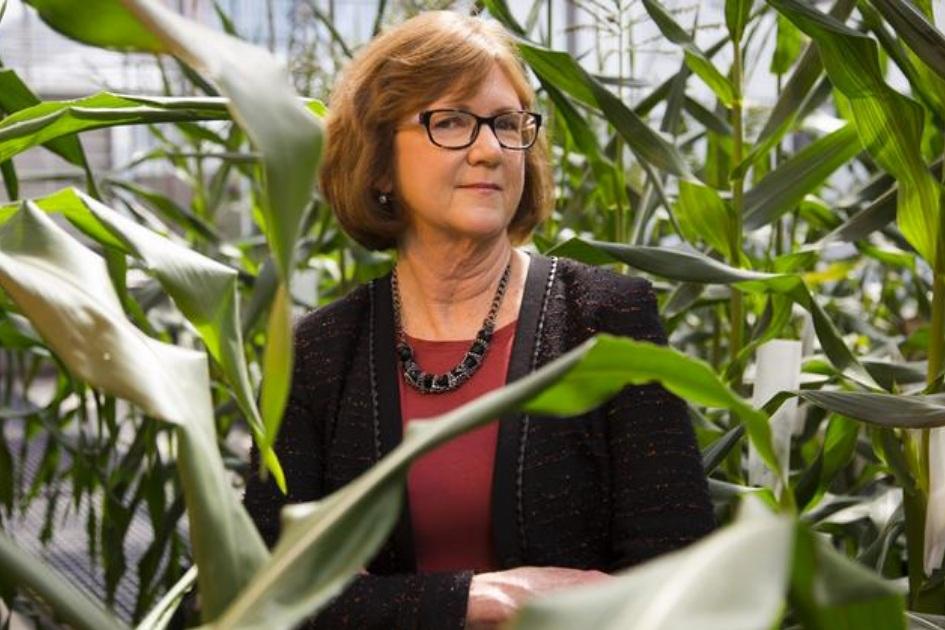 AG innovation showcase -