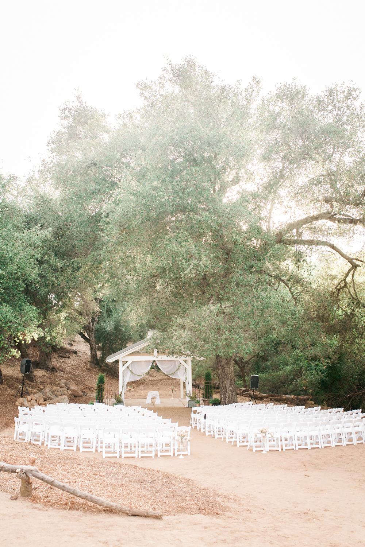 alpine-ca-wedding-16.jpg