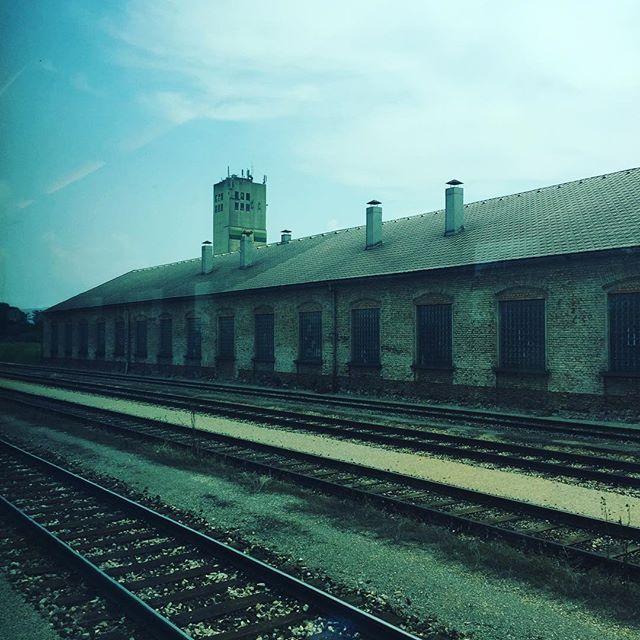 On the road 🚞 #train #austria #slovakia #journey #eary #railway