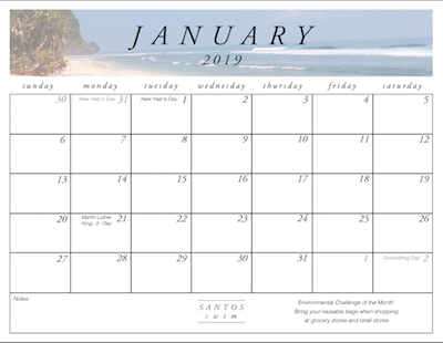 January Calendar Download Preview