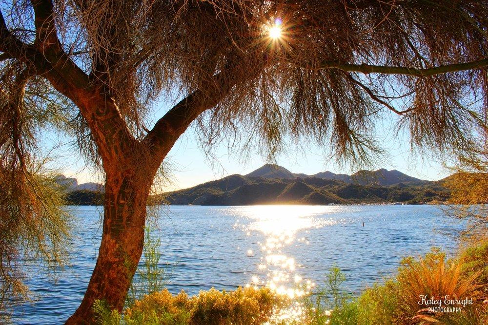 Kaley+Enright+Photography+Saguaro+Lake+Arizona.jpg