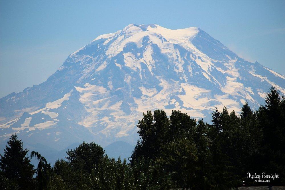 Kaley+Enright+Photography+Mount+Rainier+view.jpg