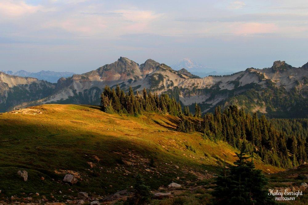 Kaley+Enright+Photography+Mount+Rainier+National+Park.jpg