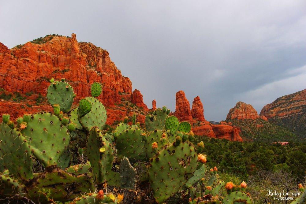 Kaley+Enright+Photography+Sedona+Arizona.jpg