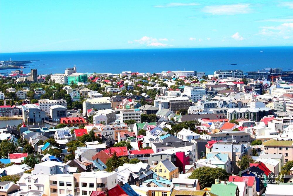 Reykjavik kaley enright.jpg