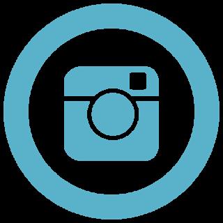instagram logo kaley enright.png