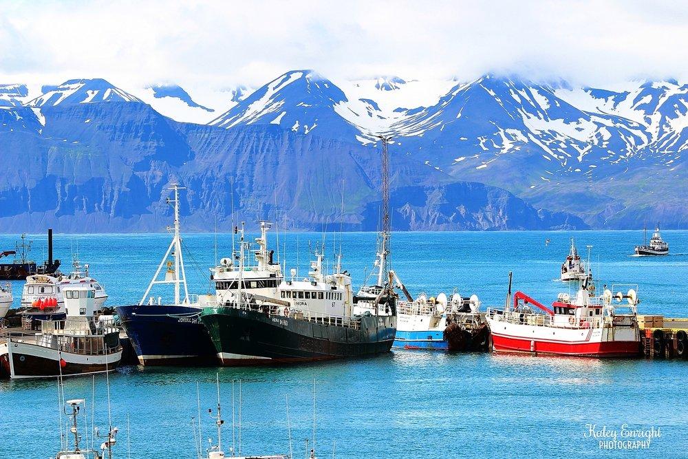 Iceland kaley enright.jpg