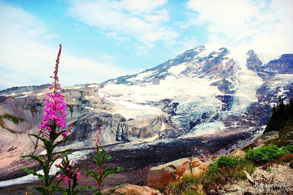 Kaley+Enright+Photography+Mount+Rainier,+Washington.jpg