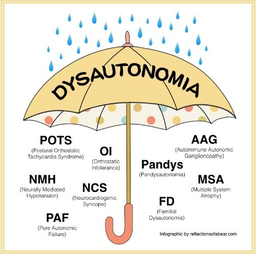 dysautonomia What is POTS longmont